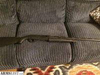 For Sale: Benelli