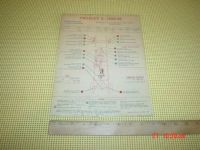 Sell Crosley A 1939-40 USED Chassis Lubrication Points Chart motorcycle in Bethlehem, Pennsylvania, United States