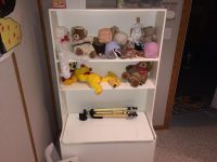Kids toy box and display shelves