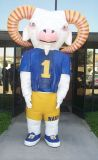 Fur Costumes to cheer Michigan Football Team