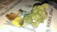 $$ Top Quality Sativa,Hybrid and Indica,inbox me for some 702 850-0572