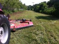 Cedar Removal, Land Clearing, Tractor Mowing (San Marcos, TX)