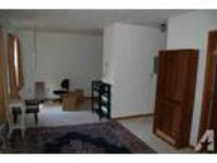 $460 / 1 BR - Very nice 1 BR in historic Park Apartments Central Mankato (12