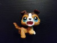 LITTLEST PET SHOP COLLIE DOG