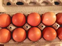 Rhode Island Red fresh farm eggs unfertilized 3.00 a dozen or fertilized for 5.00