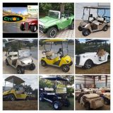 Golf Carts By Crown Carts NEW Awesome Golf Carts A/C Heat Radio More