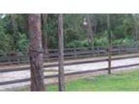 Business 5 Acres Need Barn Manager for Riding Lessons Room to pasture board on