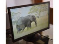 "NEC 22"" Widescreen LCD Monitor AS221WM 1680x1050, 16:10"