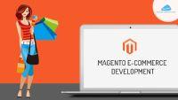 Custom Magento Ecommerce Development