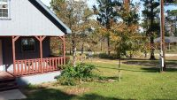 Cottage Home for rent in Bastrop (near everything and beautiful)