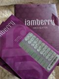 Jamberry mini dryer