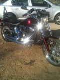 Trade or sell harley soft tail