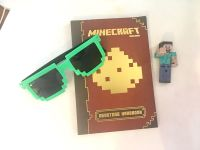 Minecraft Lot! Sunglasses, Figure & Book! (Sunglasses have small scratch) Take all for $3.50