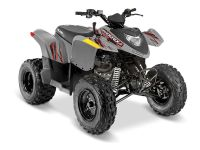 2018 Polaris Phoenix 200 Kids ATVs Weedsport, NY
