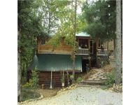 Foreclosure - Highway 13 S, Hurricane Mills TN 37078