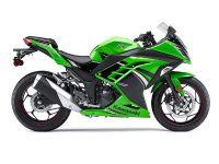 2014 Kawasaki Ninja 300 SE Sport Motorcycles Brooklyn, NY