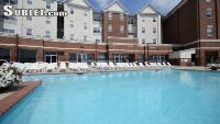 $395 4 apartment in Warren (Bowling Green)
