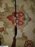 For Sale/Trade: Revelation 310a Western Auto 12ga pump shotgun