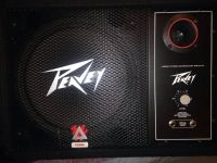 Peavey monitor,  and sub