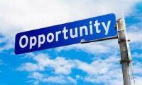 Seeking partner(s) or private investor