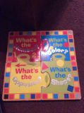 Puzzle book with 4 books SF home