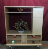 Cabinet for Entertainment Center or Misc. $15 Adel