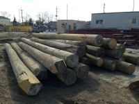 Pilings for sale