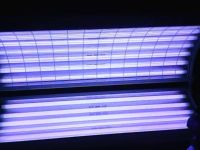 WOLFF TANNING BED