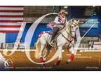 Decoroso PRE Andalusian Stallion Champion at Stud