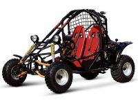 2017 Cougar 150cc Spider Full Size Other Go-Karts Jacksonville, FL