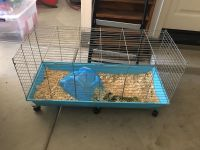 Guinie pig / critter cage