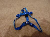 small dog harness - 1.00