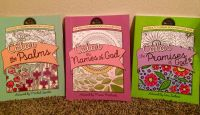 Color The Bible: Adult Coloring Book Set of 3