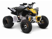 2014 Can-Am DS 90 X Kids ATVs Keokuk, IA