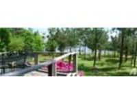 $100 / 3 BR - ft - LAKE THURMOND WATERFRONT (Lincolnton, GA