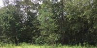 Partially Wooded Lot in Mobile, AL!