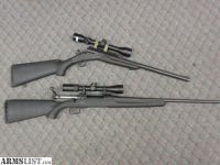 For Sale: 45-70 & .223