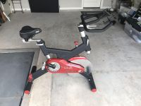 Sole SB700 Spin Bike Exercise