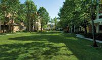 $2,238, 1br, Monterey Grove Apartments