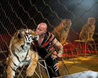 Ringling Bros. and Barnum  Bailey Circus Tickets at Baton Rouge River Center Arena on 08142015