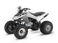 2017 Honda TRX250X Sport ATVs Erie, PA