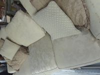 Sofa/couch and pillows deliverd