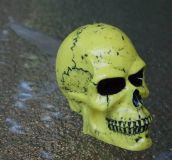 Buy YELLOW HUGE SKULL for Suzuki GSXR600/750/1000/Volusia/Katana/Bandit/Blvd C50/M50 motorcycle in Canton, Georgia, US, for US $18.95