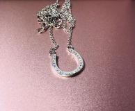 Sterling silver horse shoe necklace