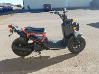 2015 Honda Ruckus 250 - 500cc Scooters Rapid City, SD