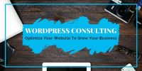 Shine A Light On Your WordPress Website ☀ Consulting/Web Design