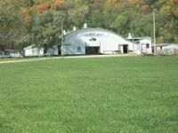 Holiday Horse Sale! Heart Of Illinois Arena, Mossville IL