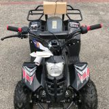 110cc atv for kids taotao