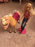 Barbie and her horse