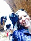 Work From Home Pet Sitter/Walker